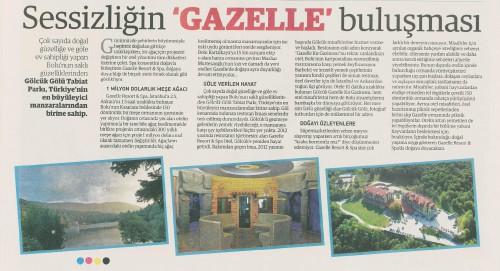 gazelle ilanlar 8